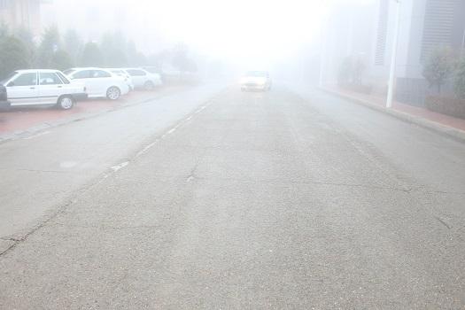 تصاویر/ پارک فناوری پردیس پوشیده در مه