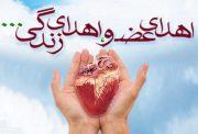 اهدای اعضای «علیرضا کاظمزاده» جوان بومهنی، جان تازهای به چند انسان بخشید
