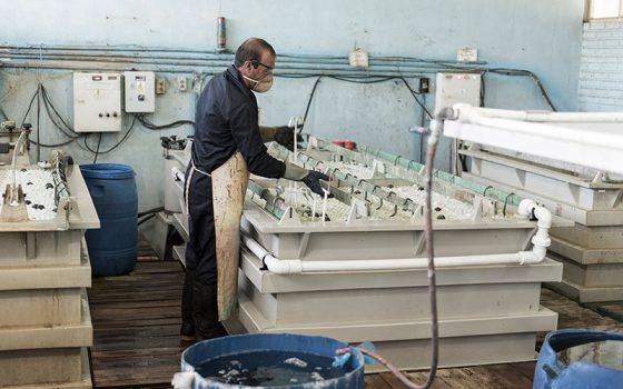 پایش مستمر واحدهای آبکاری شهرستان پردیس/ شناسایی چهار واحد آبکاری جدید