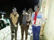 دستگیری متخلفین زندهگیری پرندگان در حاشیه پارک ملی لار
