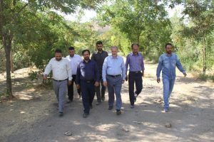 روستای سعید آباد جاجرود