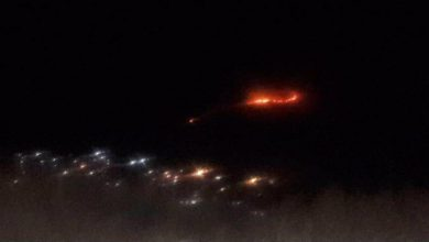 تصویر از نایب رییس شورای روستای سعیدآباد جاجرود خبر داد؛  آتشسوزی در پارک ملی خجیر/ نیاز به کمکهای مردمی در خاموش نمودن آتش