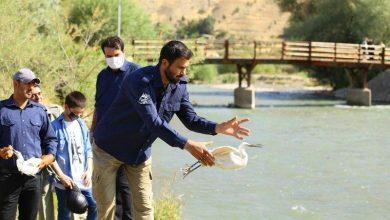 تصویر از برگزاری مراسم پاکسازی حاشیه رودخانه جاجرود و رهاسازی گونههای جانوری