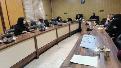 تصویر از برگزاری جلسه کمیته اجرایی برنامه پزشک خانواده در شهرستان پردیس/ بررسی راهکارهای افزایش سطح خدمترسانی به خانوارها