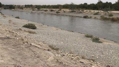تصویر از ۱۵ هکتار از بستر رودخانه جاجرود سنددار شد