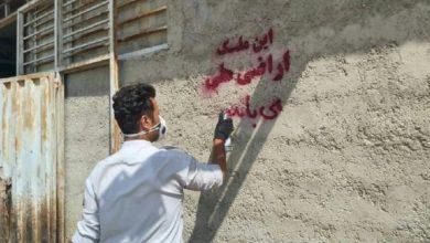 تصویر از آزادسازی ۱۴/۵ هکتار از اراضی بیتالمال بومهن